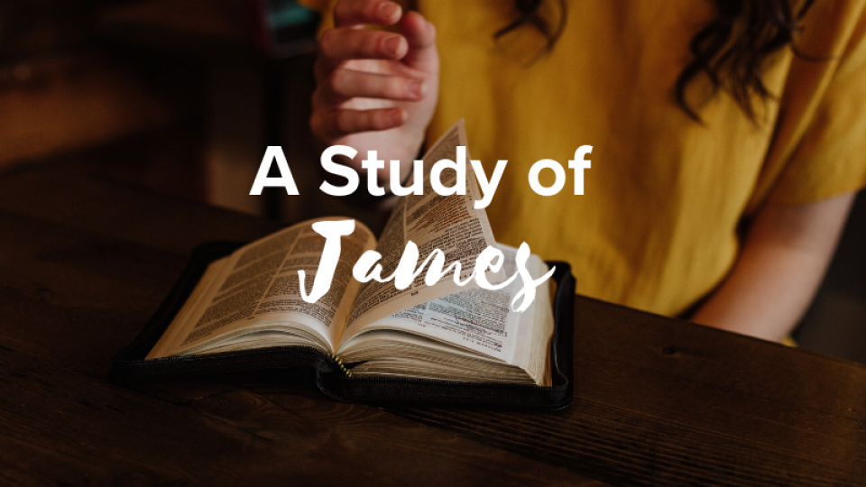 Women: Morning Rays - A Study of James