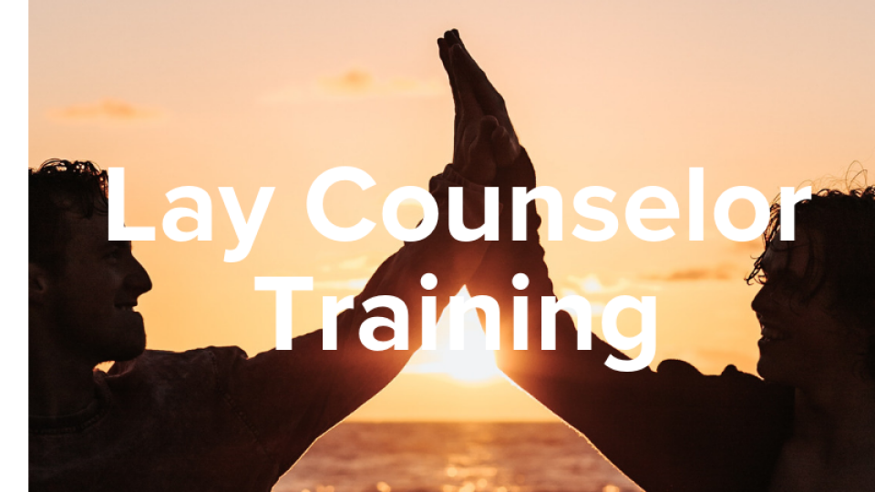 People Help Lay Counselor Training
